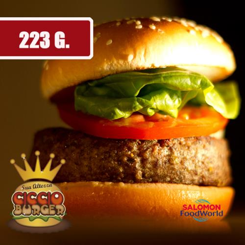CICCIO BURGER CHIPOTLE