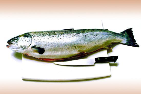Proprietà del salmone